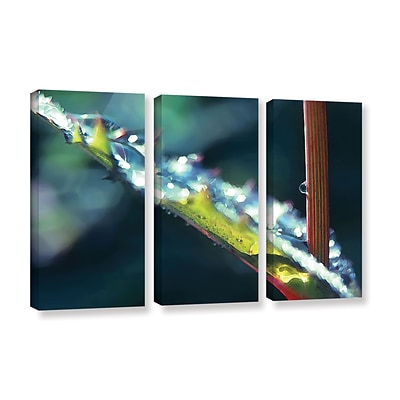 ArtWall After Garden Rain 3-Piece Gallery-Wrapped Canvas Set 36 x 54 (0uhl145c3654w)
