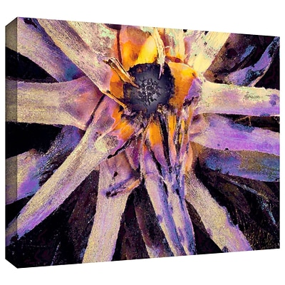 ArtWall Agave Glow Gallery-Wrapped Canvas 14 x 18 (0uhl146a1418w)
