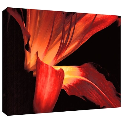 ArtWall Blossom Glow Gallery-Wrapped Canvas 14 x 18 (0uhl149a1418w)