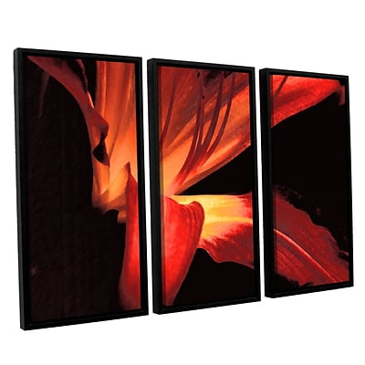 ArtWall Blossom Glow 3-Piece Canvas Set 36 x 54 Floater Framed (0uhl149c3654f)