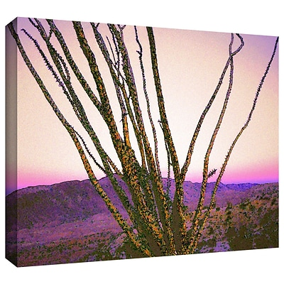 ArtWall Borrego Desert Dawn Gallery-Wrapped Canvas 24 x 32 (0uhl150a2432w)