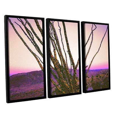ArtWall Borrego Desert Dawn 3-Piece Canvas Set 36 x 54 Floater-Framed (0uhl150c3654f)