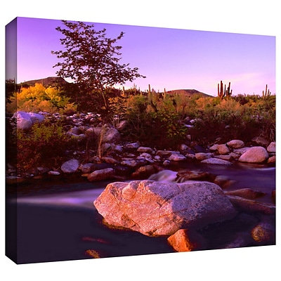 ArtWall Deer Creek Evening Gallery-Wrapped Canvas 14 x 18 (0uhl157a1418w)