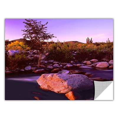 ArtWall Deer Creek Evening Art Appeelz Removable Wall Art Graphic 18 x 24 (0uhl157a1824p)