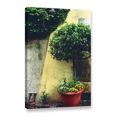 ArtWall Giardino Di Boboli Wall Gallery-Wrapped Canvas 16 x 24 (0yat072a1624w)