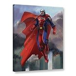 ArtWall Hero Gallery-Wrapped Canvas 36 x 48 (0goa001a3648w)