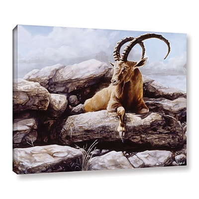 ArtWall Ibex Gallery-Wrapped Canvas 24 x 32 (0goa002a2432w)