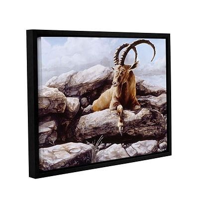 ArtWall Ibex Gallery-Wrapped Canvas 24 x 32 Floater-Framed (0goa002a2432f)