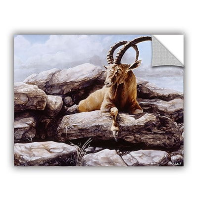 ArtWall Ibex Art Appeelz Removable Wall Art Graphic 14 x 18 (0goa002a1418p)
