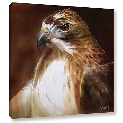 ArtWall RedTailed Hawk Gallery-Wrapped Canvas 14 x 14 (0goa012a1414w)