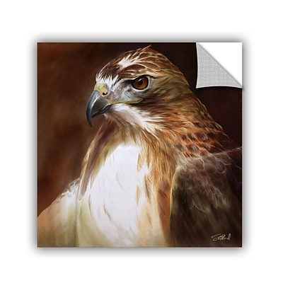 ArtWall RedTailed Hawk Art Appeelz Removable Graphic Wall Art 18 x 18 (0goa012a1818p)