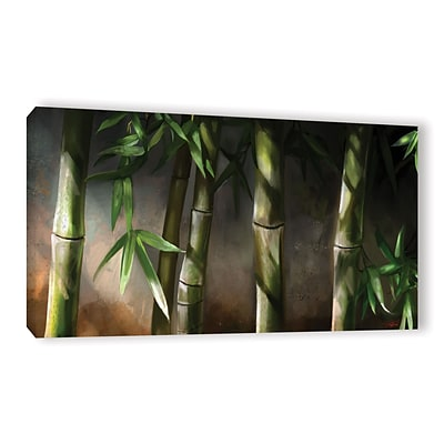 ArtWall Bamboo Gallery-Wrapped Canvas 24 x 48 (0goa037a2448w)