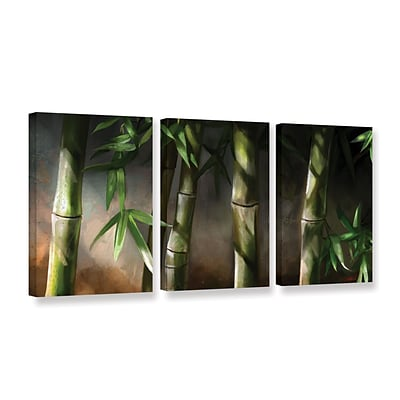 ArtWall Bamboo 3-Piece Gallery-Wrapped Canvas Set 24 x 48 (0goa037c2448w)