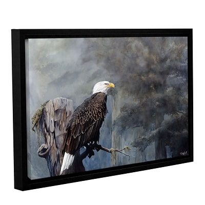 ArtWall Freedom Haze Gallery-Wrapped Canvas 16 x 24 Floater-Framed (0goa057a1624f)