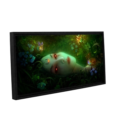 ArtWall Aadyasha Gallery-Wrapped Canvas 24 x 48 Floater-Framed (0str001a2448f)