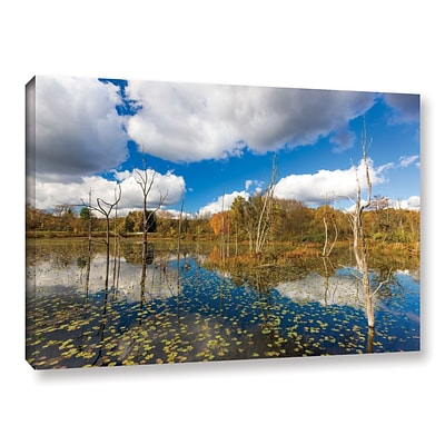 ArtWall Beaver Marsh Gallery-Wrapped Canvas 24 x 36 (0yor001a2436w)