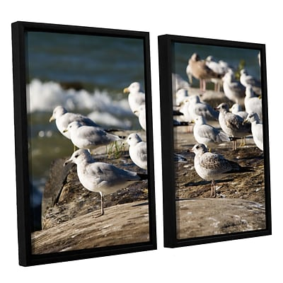 ArtWall Pigeons 2-Piece Canvas Set 32 x 48 Floater-Framed (0yor049b3248f)