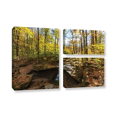 ArtWall Blue Hen Falls 3-Piece Gallery-Wrapped Canvas Flag Set 24 x 36 (0yor004g2436w)