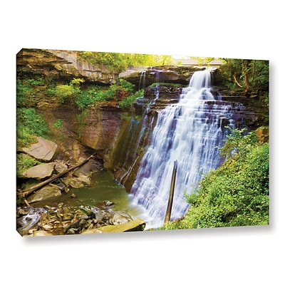 ArtWall Brandywine Falls 2 Gallery-Wrapped Canvas 12 x 18 (0yor008a1218w)