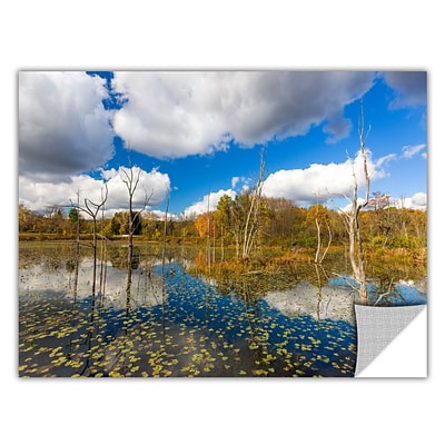 ArtWall Beaver Marsh Art Appeelz Removable Wall Art Graphic 16 x 24 (0yor001a1624p)