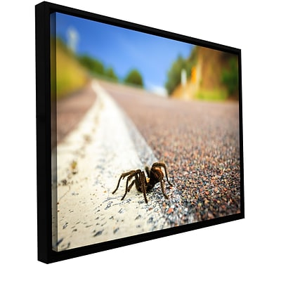 ArtWall Tarantula Gallery-Wrapped Canvas 12 x 18 Floater-Framed (0yor057a1218f)