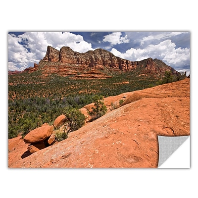 ArtWall Sedona Art Appeelz Removable Wall Art Graphic 16 x 24 (0yor053a1624p)