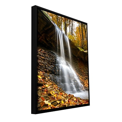 ArtWall Blue Hen Falls 2 Gallery-Wrapped Canvas 16 x 24 Floater-Framed (0yor002a1624f)