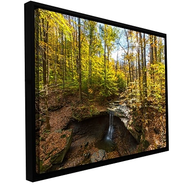 ArtWall Blue Hen Falls Gallery-Wrapped Canvas 12 x 18 Floater-Framed (0yor004a1218f)
