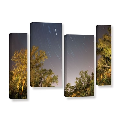 ArtWall Star Trails 4-Piece Gallery-Wrapped Canvas Staggered Set 24 x 36 (0yor056i2436w)