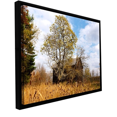 ArtWall Cvnp Barn Gallery-Wrapped Canvas 12 x 18 Floater-Framed (0yor038a1218f)