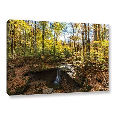 ArtWall Blue Hen Falls Gallery-Wrapped Canvas 24 x 36 (0yor004a2436w)