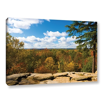 ArtWall Virginia Kendall Gallery-Wrapped Canvas 16 x 24 (0yor060a1624w)