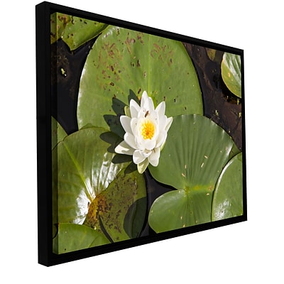 ArtWall Lily Pad Gallery-Wrapped Canvas 12 x 18 Floater-Framed (0yor045a1218f)