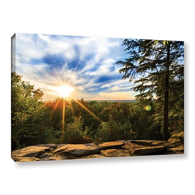 ArtWall Virginia Kendall 2 Gallery-Wrapped Canvas 32 x 48 (0yor059a3248w)