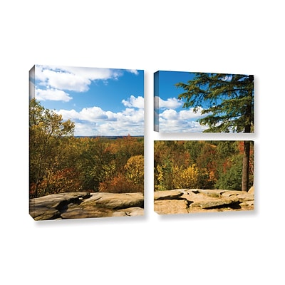 ArtWall Virginia Kendall 3-Piece Gallery-Wrapped Canvas Flag Set 24 x 36 (0yor060g2436w)