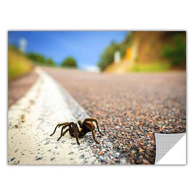 ArtWall Tarantula Art Appeelz Removable Wall Art Graphic 24 x 36 (0yor057a2436p)