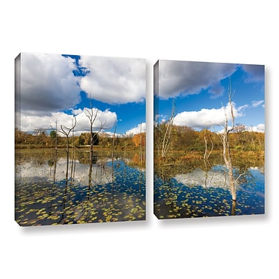 ArtWall Beaver Marsh 2-Piece Gallery-Wrapped Canvas Set 18 x 28 (0yor001b1828w)