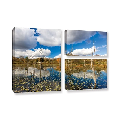 Artwall Beaver Marsh 24 x 36 3-Piece Gallery-Wrapped Canvas Flag Set (0yor001g2436w)