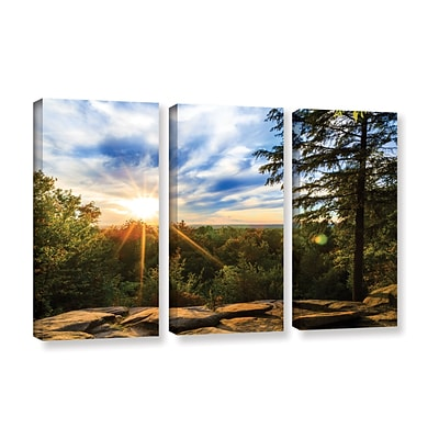 ArtWall Virginia Kendall 2 3-Piece Gallery-Wrapped Canvas Set 36 x 54 (0yor059c3654w)
