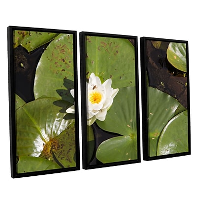 ArtWall Lily Pad 3-Piece Canvas Set 36 x 54 Floater-Framed (0yor045c3654f)