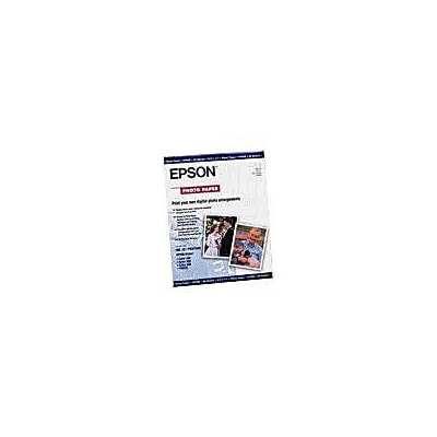 Epson® Premium Photo Paper; 19 x 13, White/Blue (S041327)