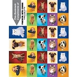 Photo Image 3-Up Laser Postcards with Bookmark, Dogs/Cats Checkered