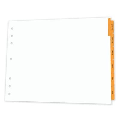 Appointment Book Dividers, 8-1/2x11