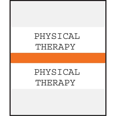 Medical Arts Press® Standard Preprinted Chart Divider Tabs; Physical Therapy, Orange