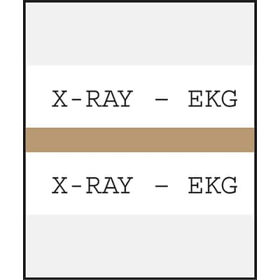 Medical Arts Press® Standard Preprinted Chart Divider Tabs; X-Ray®EKG, Tan