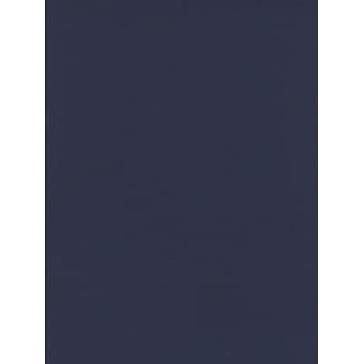 Canson Mi-Teintes Tinted Paper Indigo Blue 19 In. X 25 In. [Pack Of 10]