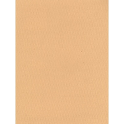 Canson Mi-Teintes Tinted Paper Green 8.5 In. X 11 In. [Pack Of 25]