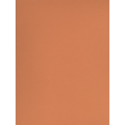 Canson Mi-Teintes Tinted Paper Buff 19 In. X 25 In. [Pack Of 10]