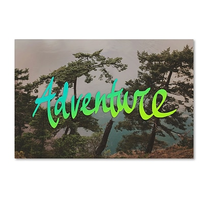 Trademark Fine Art Leah Flores Adventure (Whidbey Island) 30 x 47 (ALI0680-C3047GG)