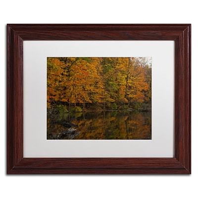 Trademark Fine Art Kurt Shaffer Still Golden Reflections 11 x 14 (KS01047-W1114MF)